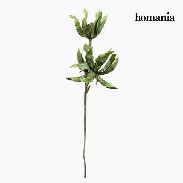 Blomster Skum Green by Homania