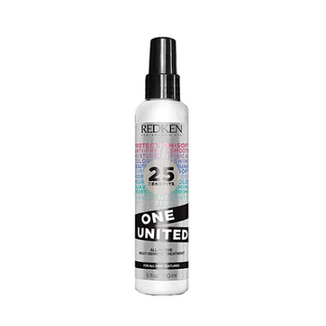 Anti-Frizz Treatment One United Redken (150 ml)