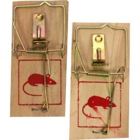 Mouse Trap 2pcs Wooden ea. 9.5x4.8cm in Poly Bag